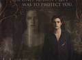 Twilight Saga New Moon - twilight-series photo