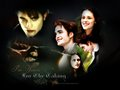 twilight-series - ~Edward & Bella~ wallpaper