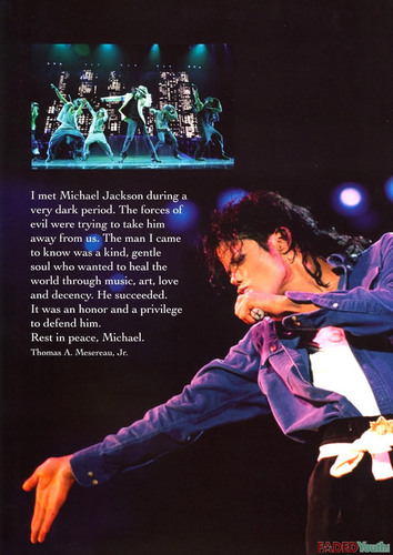 A Celebration Of The Life Of Michael Jackson KING OF POP 1958-2009 gallery book
