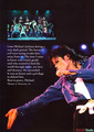 A Celebration Of The Life Of Michael Jackson KING OF POP 1958-2009 gallery book - michael-jackson photo