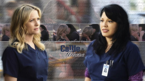 Grey's Anatomy پیپر وال entitled Callie & Arizona