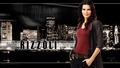 Detective Rizzoli - rizzoli-and-isles wallpaper