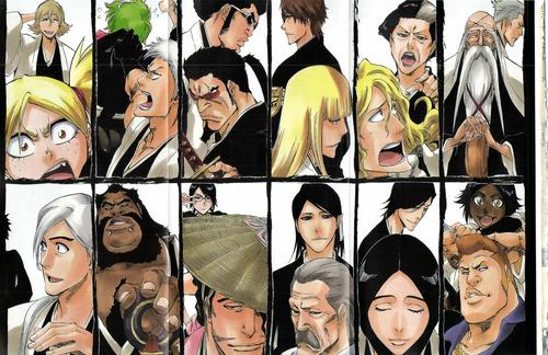 anime bleach wallpaper entitled Gotei 13 - 110 Years yang lalu