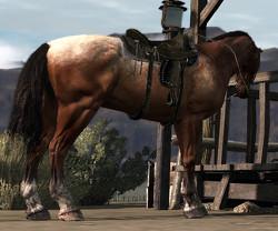 Horse-Bay