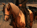 Horse Breeds - red-dead-redemption screencap