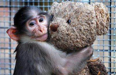 Hug me :D