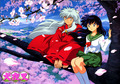 InuYasha and Kagome under a Cherry Tree - inuyasha-and-kagome-forever photo