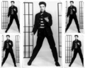 elvis-presley - Jailhouse Rock wallpaper