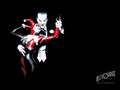 Joker and Harley - the-joker-and-harley-quinn wallpaper