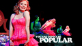 Megan Hilty's Popular - musicals wallpaper