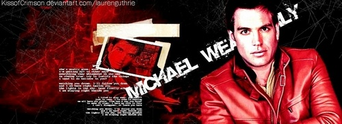 NCIS wallpaper titled Michael Weatherly banner contest