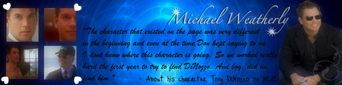Michael Weatherly for Banner Contest