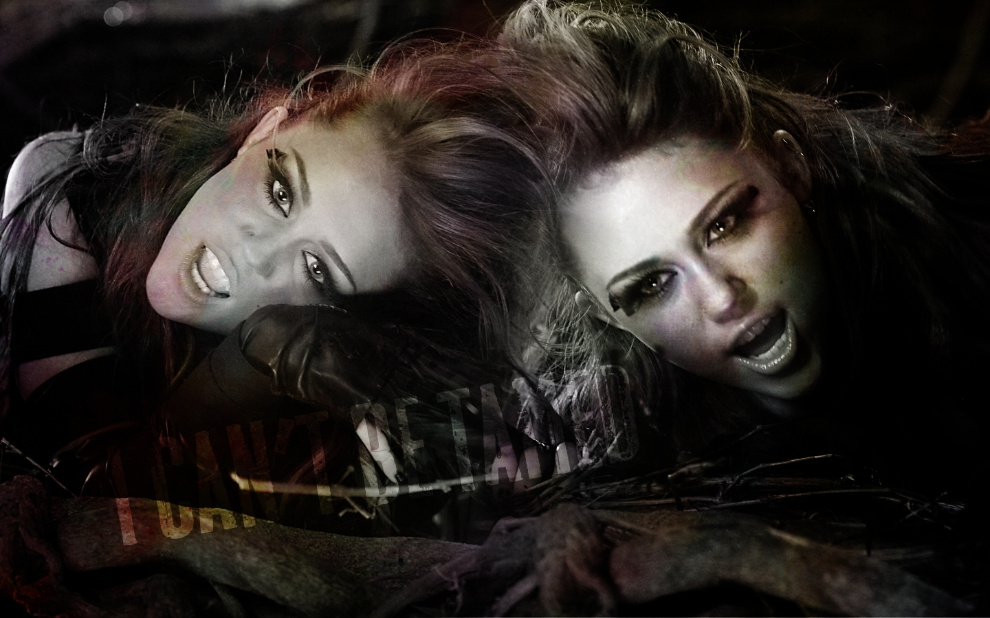 Miley can't be tamed - miley-cyrus wallpaper