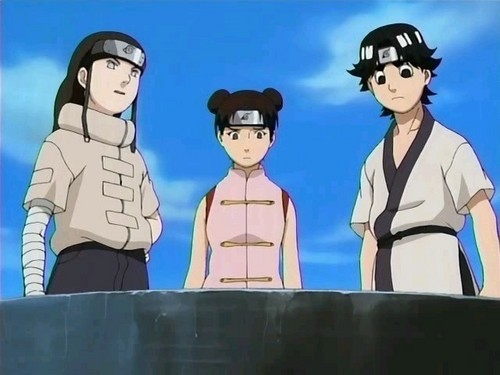 Neji and Rock and Tenten