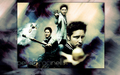 Peter Facinelli - peter-facinelli wallpaper
