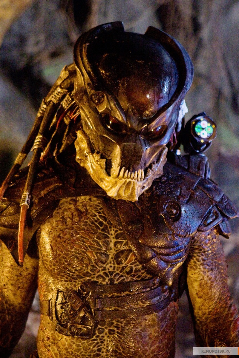 predator - photo #40