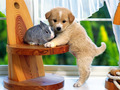 Sweet puppy with bunny - puppies wallpaper