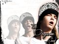 TOMMY - tom-kaulitz wallpaper