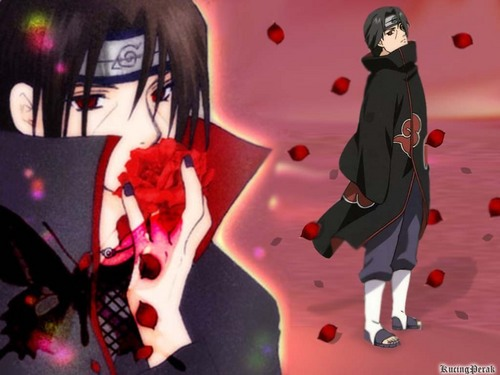 ita-kun with roses
