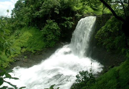 small fall tamhini 'ghat'(ghat=way from vallies and mountians)