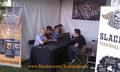AFI at Lollapalooza