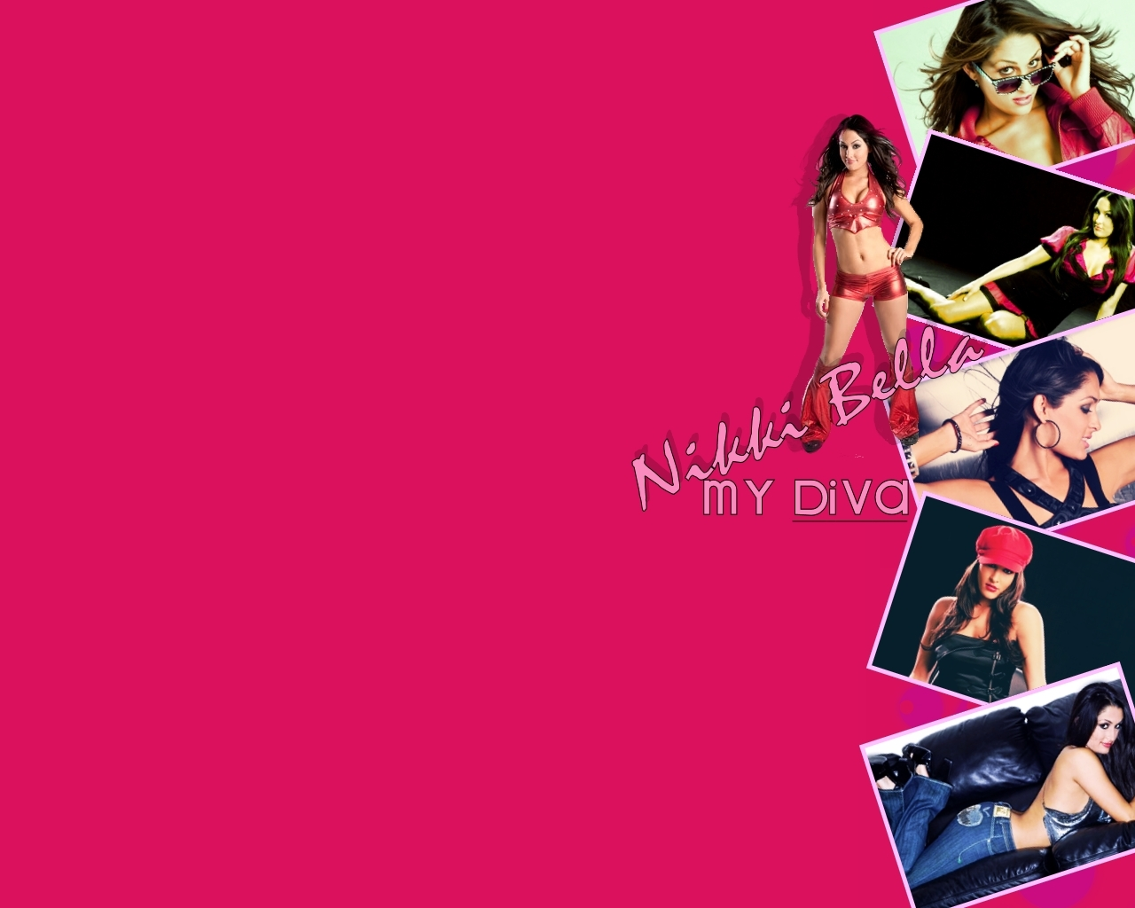 Bella The Bella Twins Wallpaper 14879157 Fanpop