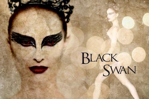 Black cisne wallpaper