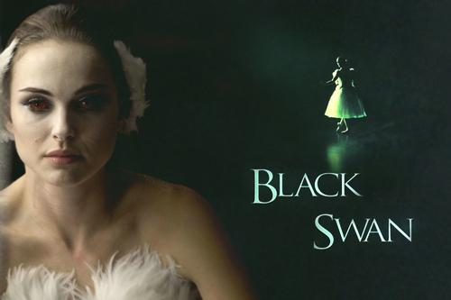 Black swan karatasi la kupamba ukuta