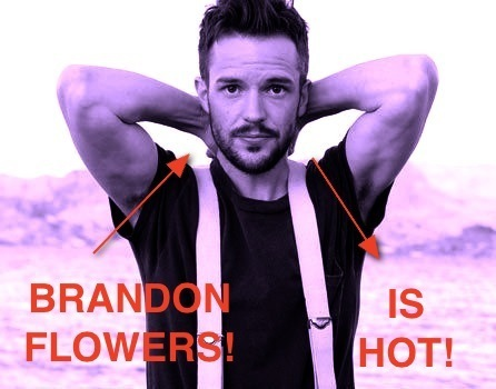 Brandon Flowers Images Brandon Is Hot Wallpaper And Background