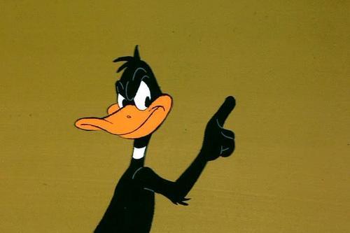 Daffy 오리