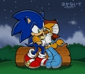 Don't Cry... - sonic-couples fan art