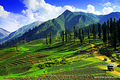 Heaven on Earth - pakistan photo