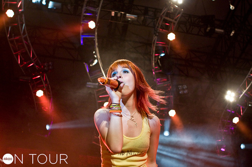 Paramore @ Charter One Pavilion