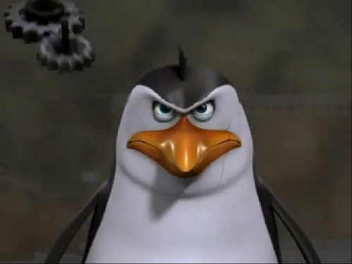 Penguins of Madagascar پیپر وال called Rico being awesome