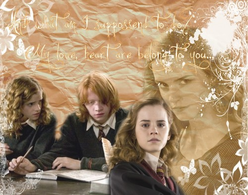 Ron and Hermione <3 ;*
