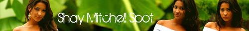Shay Mitchell banner
