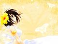Summer Haruhi achtergrond