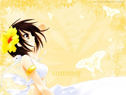 Summer Haruhi Обои
