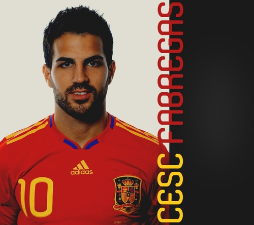cescy - cesc-fabregas Photo