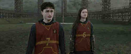 harry and ginny/dan and bonnie