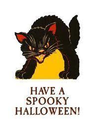 할로윈 black cat image