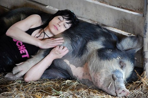 Joan and the Pig