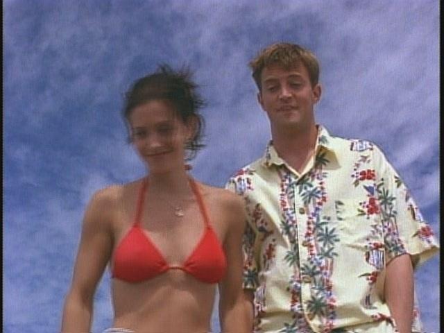 Monica and Chandler [Friends]