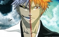 Shinigami and Hollow, who will win
