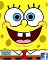 Sponge bob on Facebook page Name Page: ( Spange bob ^_^ )
