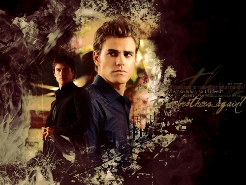 Stefan and Damon - stefan-salvatore Wallpaper