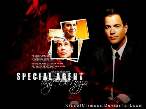 Tony DiNozzo - ncis Wallpaper