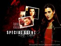 ncis - Ziva David wallpaper