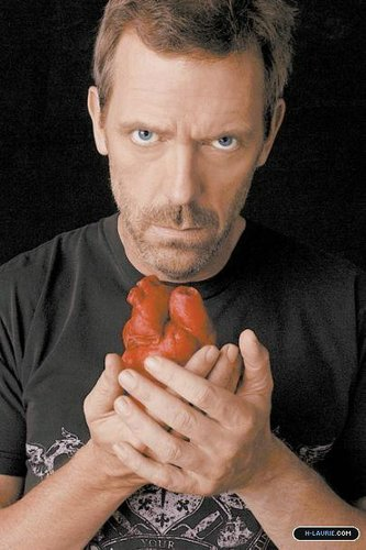 house-hugh laurie876634%