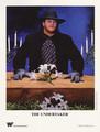 1991 Undertaker Promo